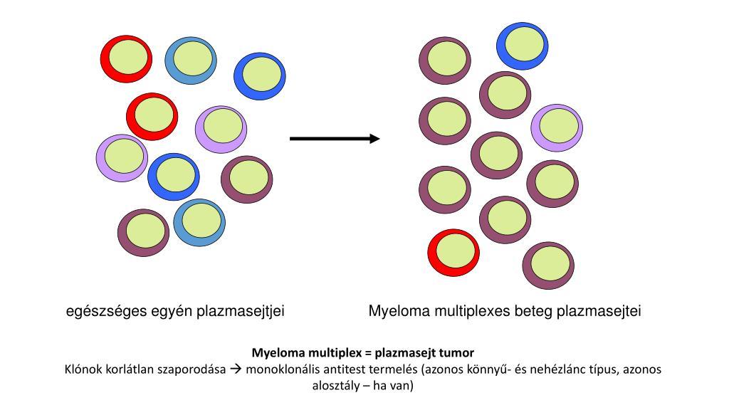 monoklonlis antitestek gyógyszerek pikkelysömörhöz pikkelysömör kezelésének módszerei népi