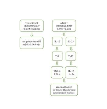 nemzetközi pikkelysömör kezelsi protokollok