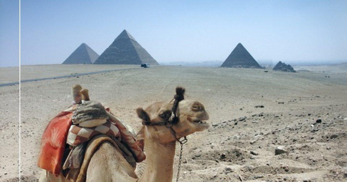 egyiptom safaga pikkelysömör kezelése