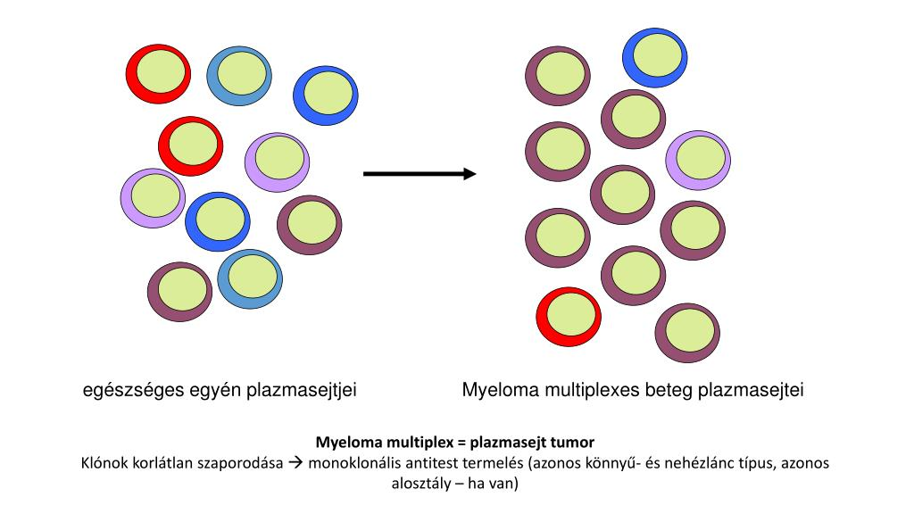 monoklonlis antitestek gyógyszerek pikkelysömörhöz a legjobb orvosság a viszketés ellen pikkelysömörben